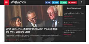 Andrew Levison article on the Washington Monthly