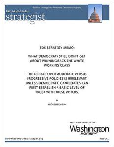 Andrew Levison strategy memo