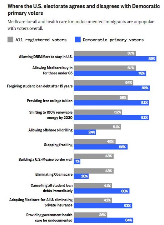 How Voters Agree and Disagree with Democratic Policy
